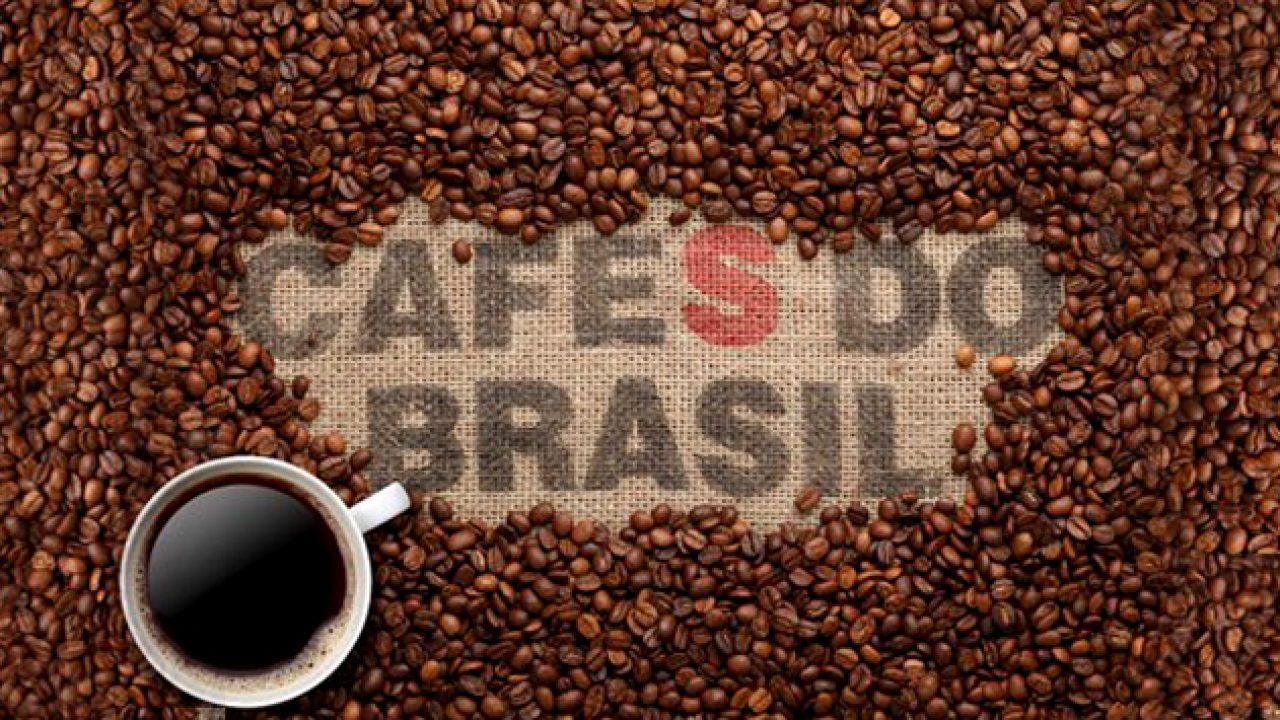 Βραζιλιάνικος καφές Μάθε τα πάντα για αυτόν